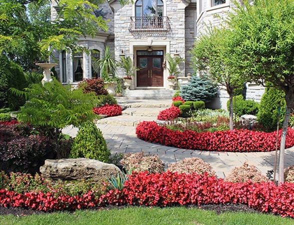 Landscaping-planting-trees-shrubs-perennials-annuals